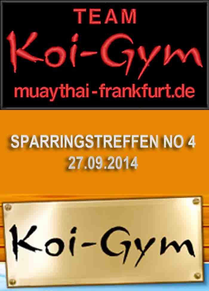 SPARRINGSLEHRGANG NO 4