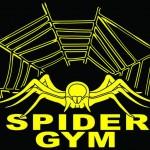 Spider Gym Rotterdam